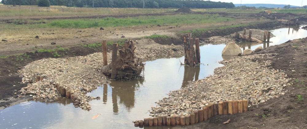 Petriwehr Oker – Ökologische Durchgängigkeit und Wehrsanierung